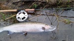 centerpin fishing guide