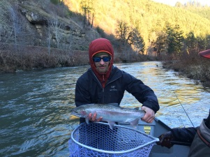 Oregon wild steelhead