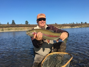 fall trout